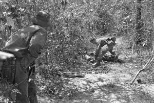 Searching the body of a dead Viet Cong soldier after an ambush (AWM)
